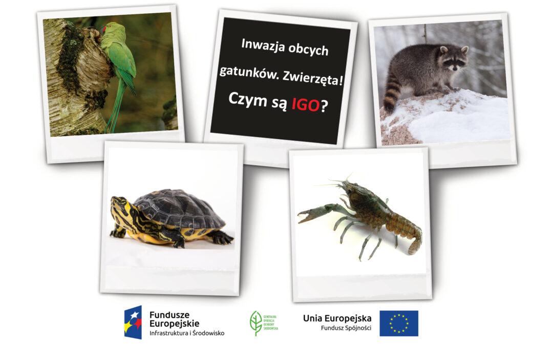 """Audycja """"Inwazja obcych gatunków!"""" w Regionalnych Rozgłośniach Polskiego Radia"""